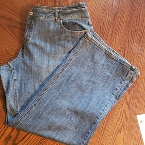 Coldwater Creek Jeans 20W